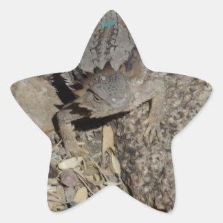 Lagarto de cuernos calcomania forma de estrella personalizadas