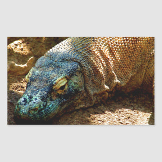Lagarto de la iguana rectangular pegatina