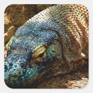 Lagarto de la iguana pegatinas cuadradas