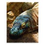 Lagarto de la iguana plantilla de membrete