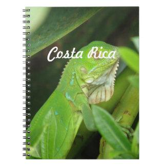 Lagarto de Rican de la costa Notebook
