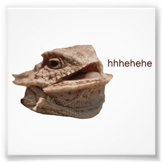Lagarto de risa de la iguana HeHe Fotografías