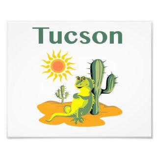 Lagarto de Tucson Arizona debajo del Saguaro Fotografía