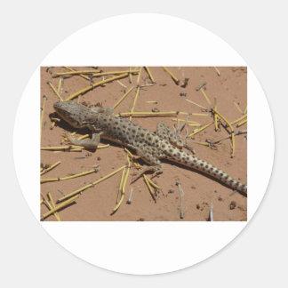 lagarto del desierto etiquetas redondas