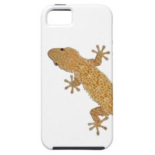 lagarto del gecko funda para iPhone SE/5/5s