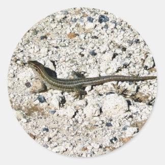 Lagarto del Gecko Etiquetas Redondas