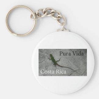 ¡Lagarto en la pared de piedra en Costa Rica Pura Llavero Redondo Tipo Pin
