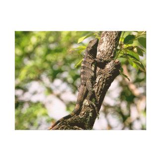 Lagarto en un árbol en el Sun Impresión En Lona