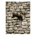 Lagarto en una ruina maya postal