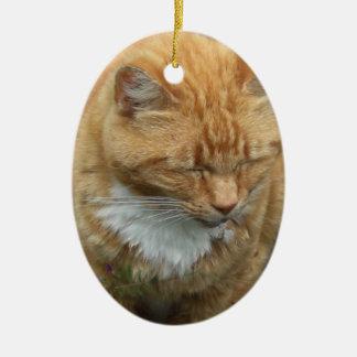 Lagarto, gato de tigre anaranjado ornamento para arbol de navidad