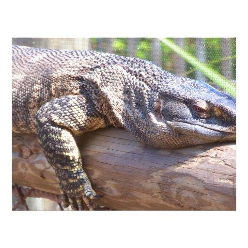 lagarto grande en cierre del registro para arriba flyer a todo color