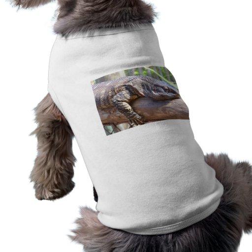 lagarto grande en cierre del registro para arriba camisas de mascota