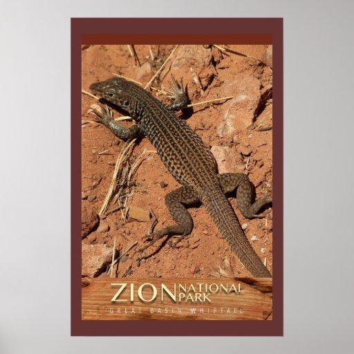 Lagarto-Poster de Zion Whiptail Póster