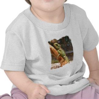 Lagarto que sube una camiseta del bebé del árbol