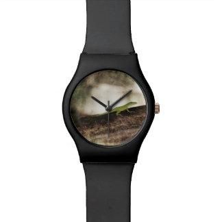 Lagarto verde de Cameleon del Gecko en rama de Relojes De Pulsera