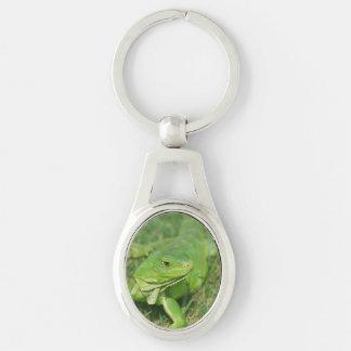 Lagarto verde del arrastramiento llavero plateado ovalado