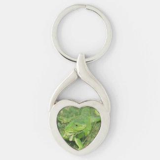 Lagarto verde del arrastramiento llavero plateado en forma de corazón