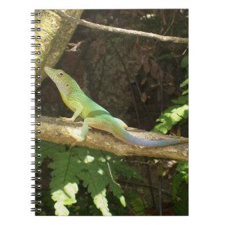 Lagarto verde jamaicano libro de apuntes