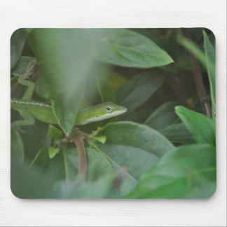 Lagarto verde tapetes de ratones