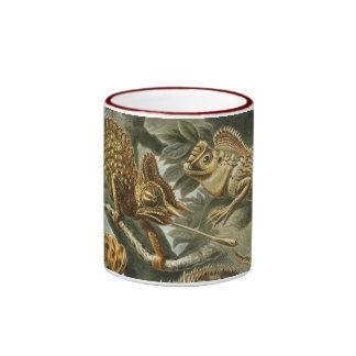 Lagartos del vintage Lacertilia de Ernst Haeckel Tazas De Café
