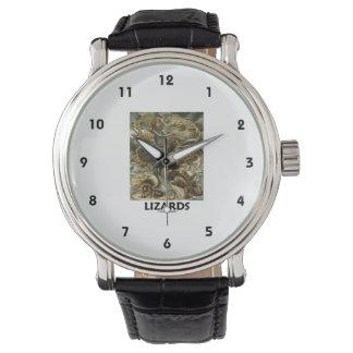 Lagartos Ernesto Haeckel Artforms de la naturaleza Reloj De Mano