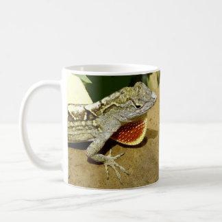 lagartos tazas