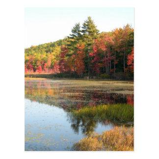 Lago 2 autumn tarjeta postal