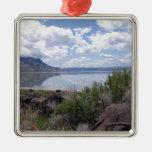 Lago Abert oregon interior Ornamento Para Arbol De Navidad