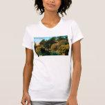 Lago Alvin Camisetas