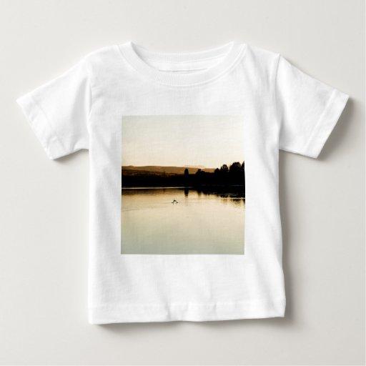 Lago amarillo swan del agua playeras