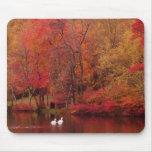 Lago autumn alfombrilla de ratón