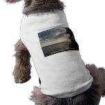 Lago azul Cayuga de la puesta del sol Camisa De Mascota