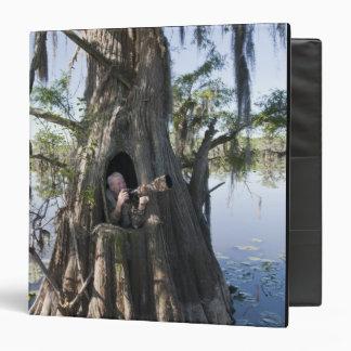 """Lago Caddo, cazando persianas Carpeta 1 1/2"""""""