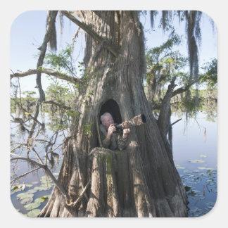 Lago Caddo, cazando persianas Pegatina Cuadrada