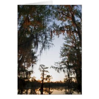 Lago Caddo en la salida del sol Tarjeta De Felicitación