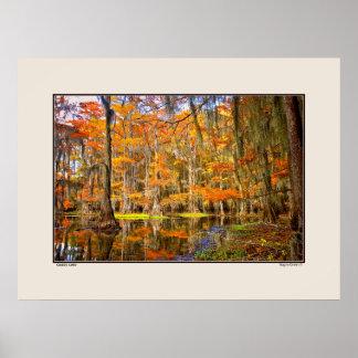 Lago Caddo - otoño - Tejas Póster