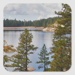 Lago California Pinecrest en agosto Calcomanías Cuadradass Personalizadas