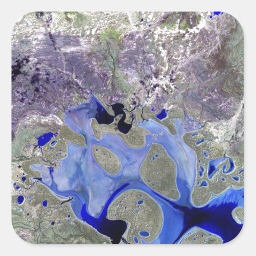 Lago Carnegie Landsat 7 Pegatina Cuadrada