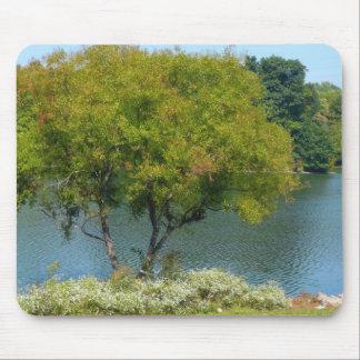 Lago centenario en la ciudad Maryland de Ellicott Alfombrilla De Raton