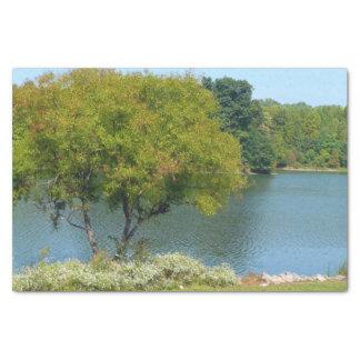 Lago centenario en la ciudad Maryland de Ellicott Papel De Seda Pequeño