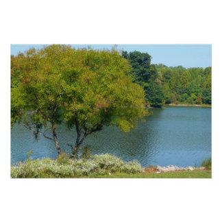 Lago centenario en la ciudad Maryland de Ellicott Perfect Poster