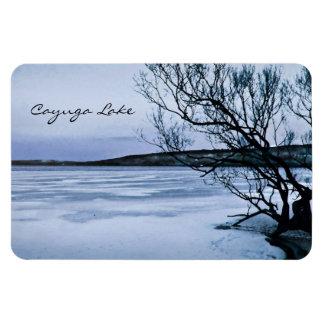 Lago congelado Cayuga Imán De Vinilo