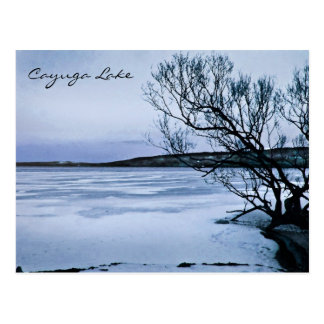 Lago congelado Cayuga Tarjeta Postal