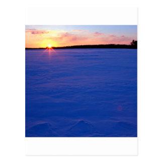 Lago congelado invierno moose en la puesta del sol postal
