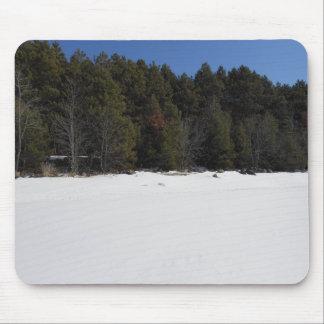 Lago congelado pino enselvado alfombrilla de ratón