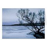 Lago congelado tarjetón
