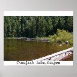 Lago crawfish, Oregon Poster