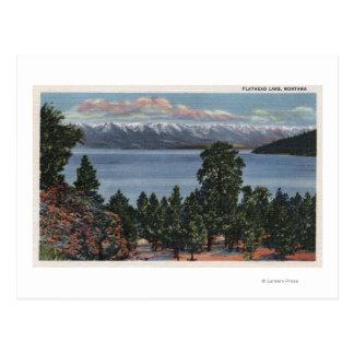 Lago de cabeza llana, Montana Tarjetas Postales