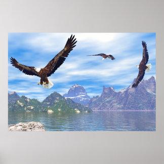 Lago de Eagles Posters
