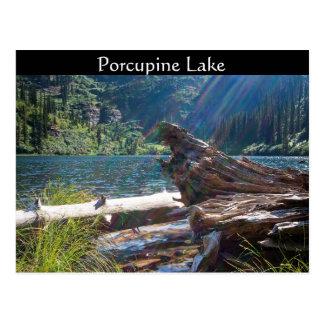 """~ """"lago de la POSTAL porcupine"""" cerca de la bifurc"""